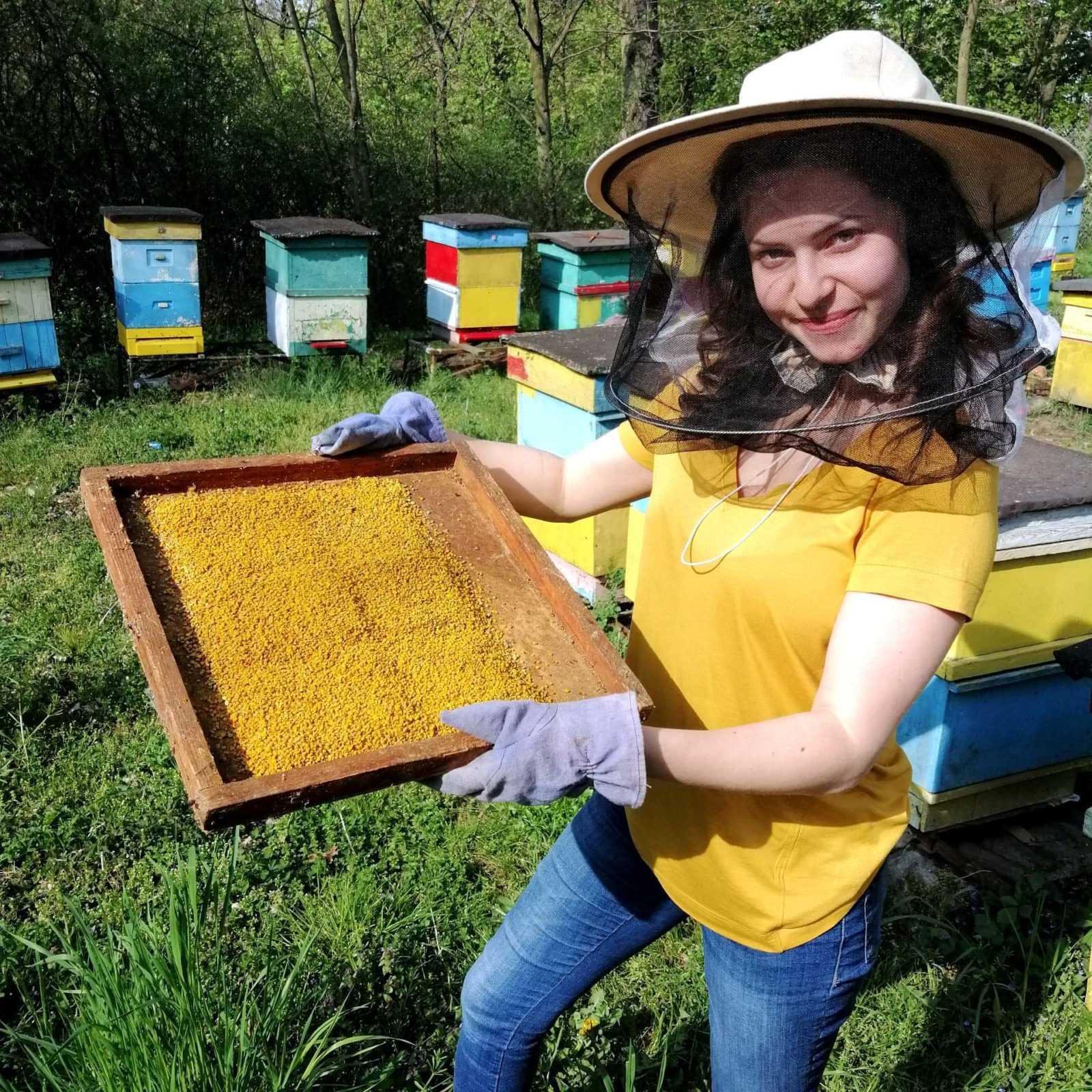 Pyłek pszczeli: lek na całe zło