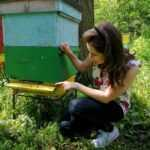Zagrożenia dla pszczół